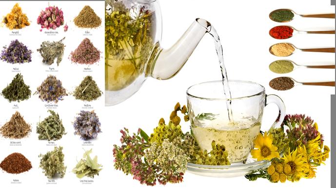 Herbs & Spices & Tea