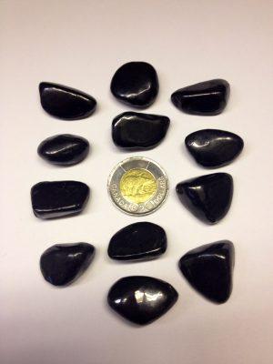 Tumbled Stones Shungite 12