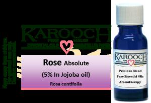 Essential Oil Rose 5% in Jojoba oil 15 ml
