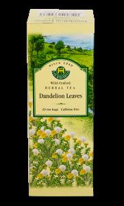 herbaria-dandelion.png
