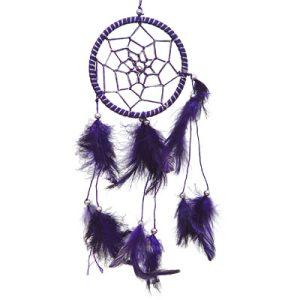 Dreamcatcher Small Purple Feathers #30019