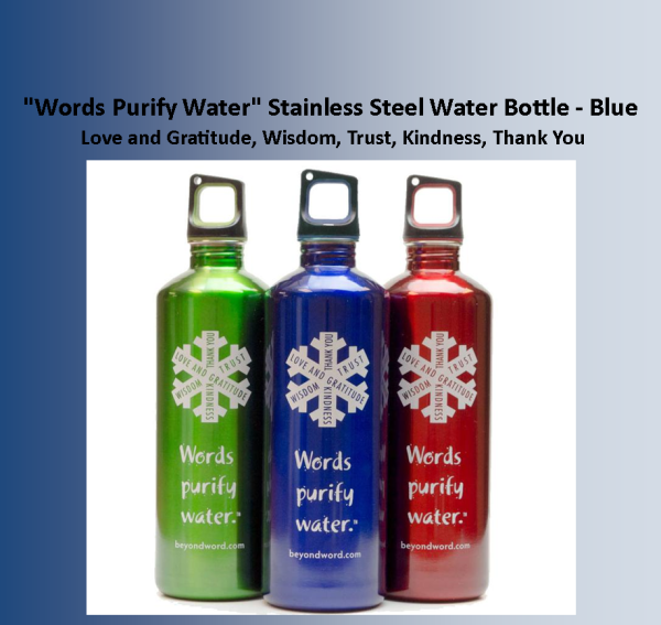Bottle SS Blue Words Purify Water