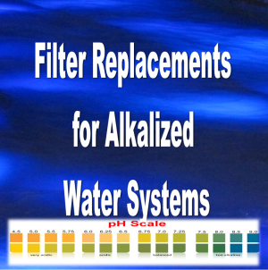 Filters - Alkalized Water System
